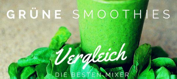 Mixer für grüne Smoothies, Vergleich